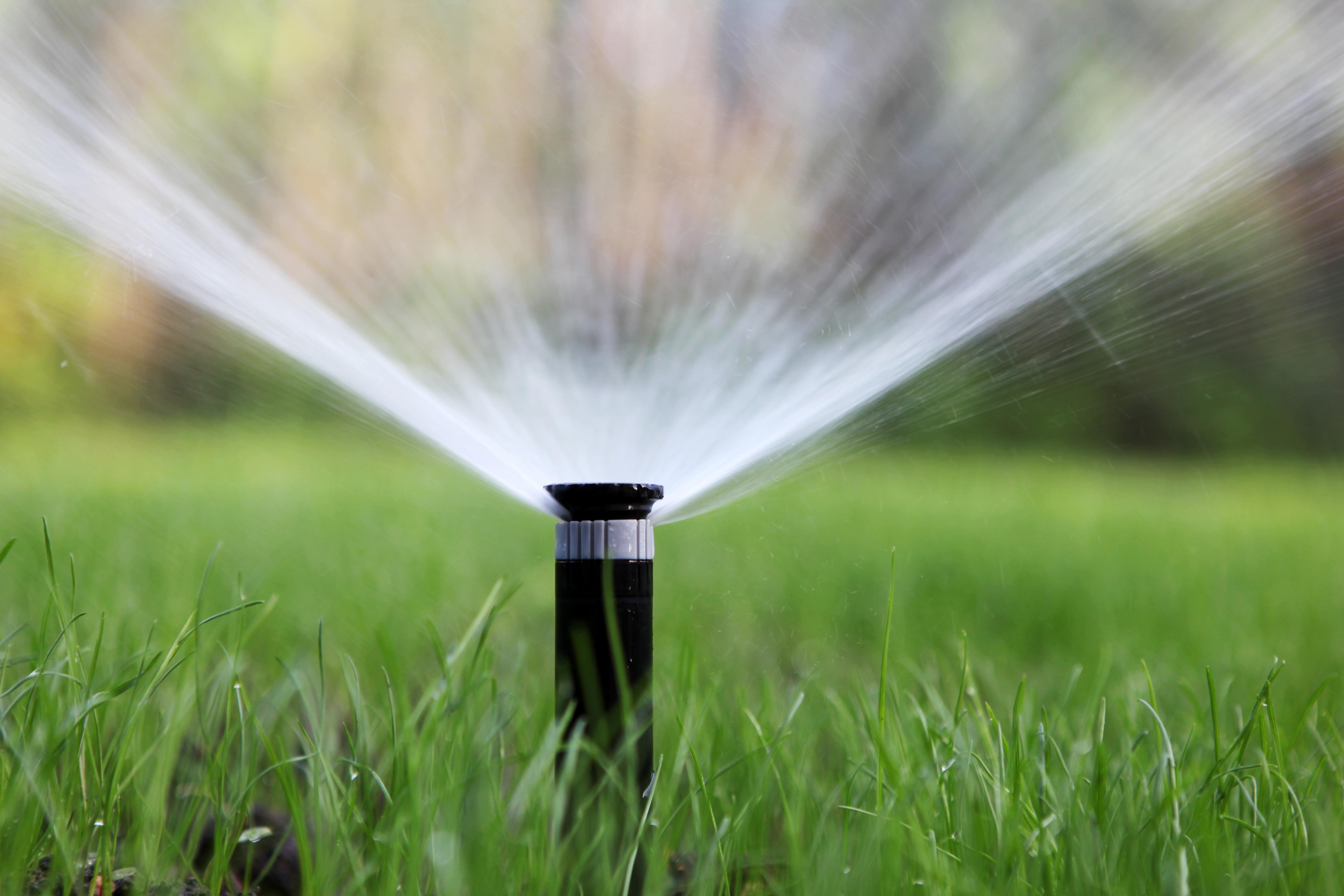 Bewässerungsanlage im Gartenbau