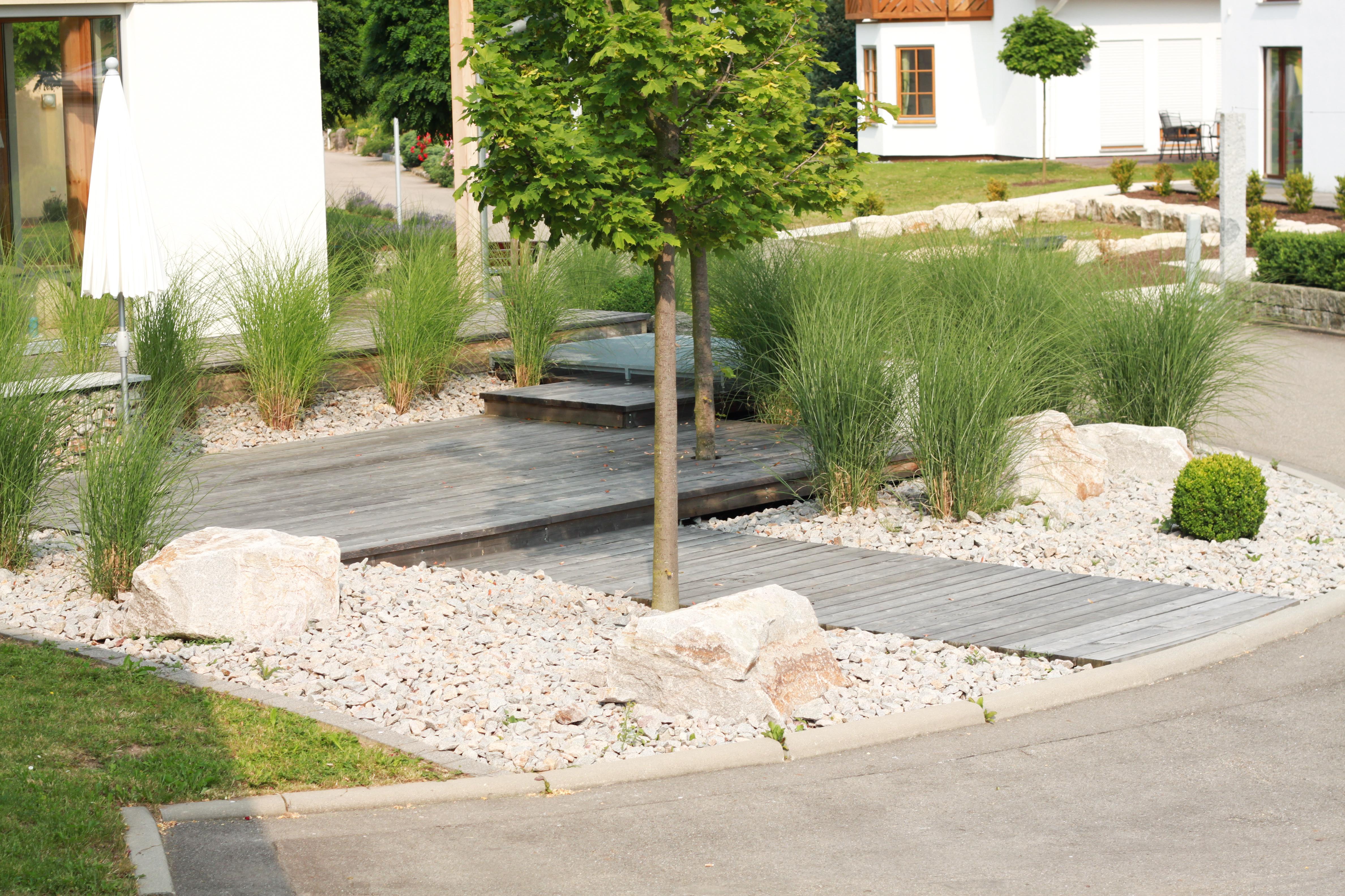 Vorgarten mit Eingang im Gartenbau